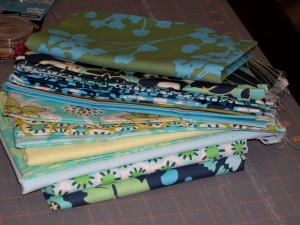 Amy Butler's Daisy Chain fabrics for a quilt