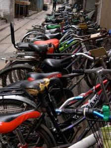bike row!