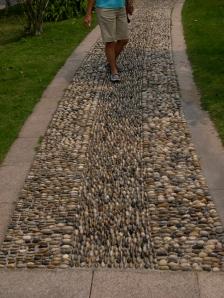Mom's stoney path