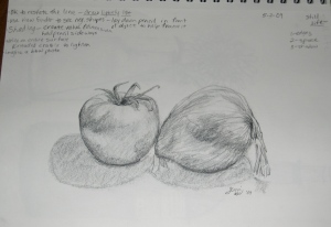 tomato-onion still life