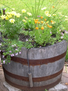 flowering whiskey barrel