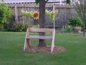Leopold bench in backyard