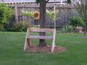 Leopold bench in backyard