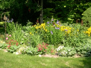 my moms pretty flower garden