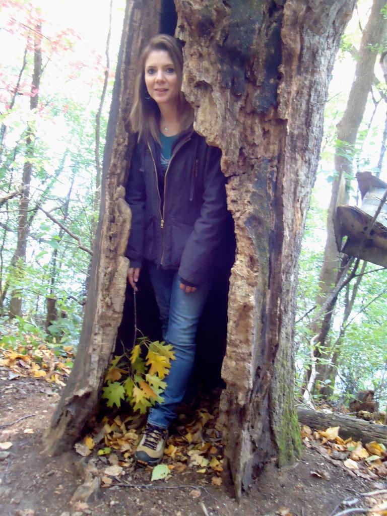 my hollow tree