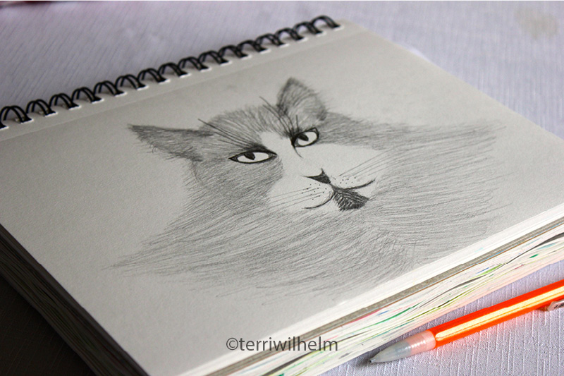sketchbook-page-Acat