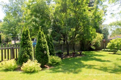 June backyard1