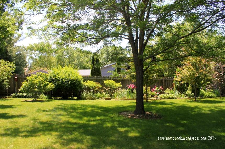 June backyard2