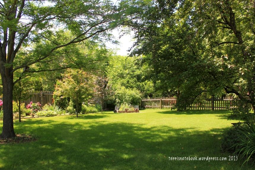 June backyard3