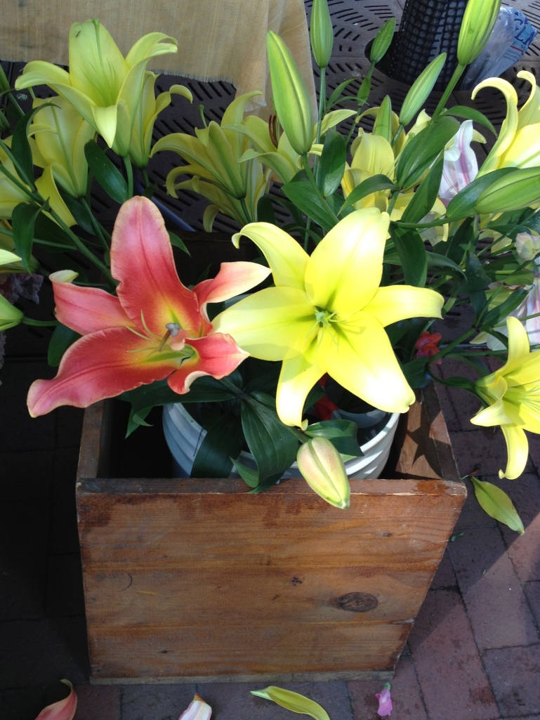 lilies in a crate