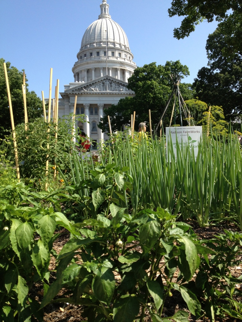 capitol community garden