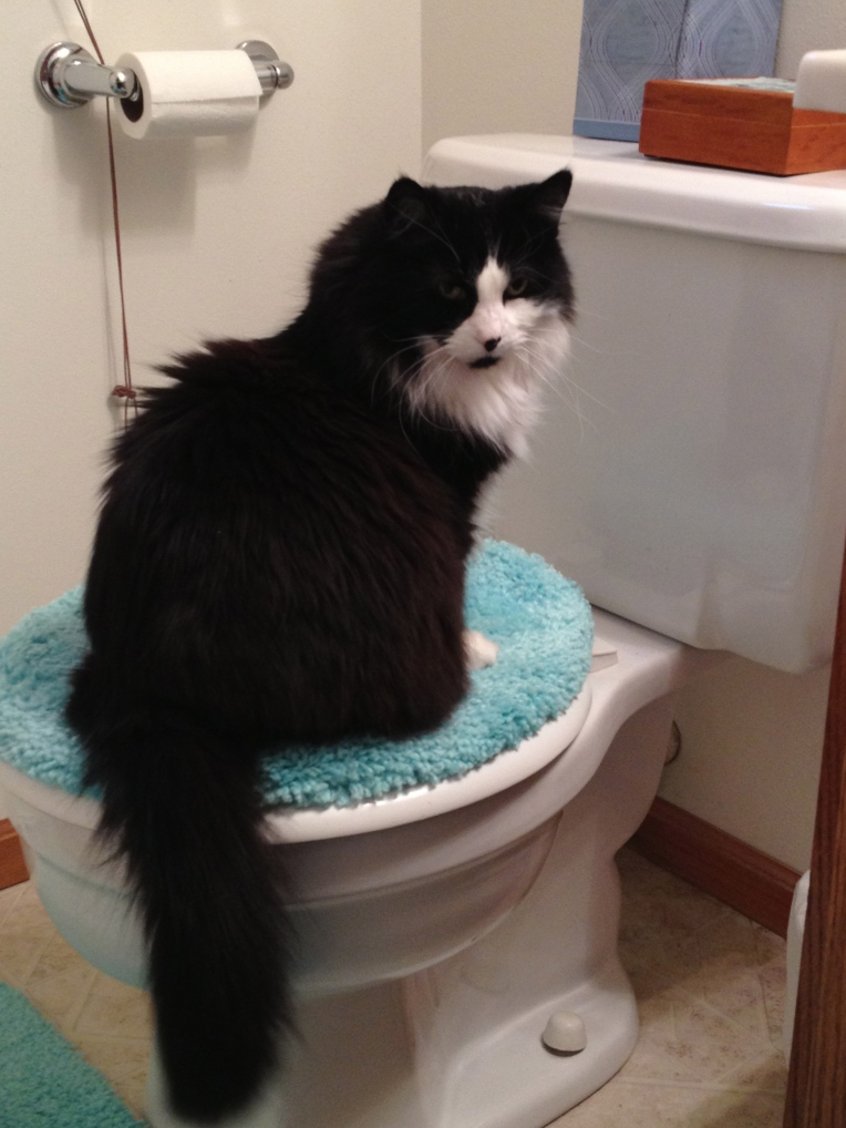 angel on the toilet