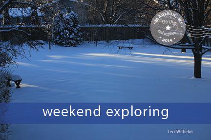 Weekend Postcard winter in backyard