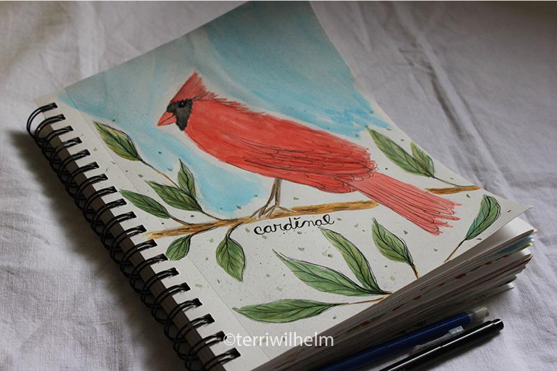 sketchbook page cardinal letter