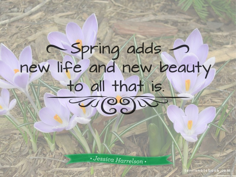 Spring adds new quote poster