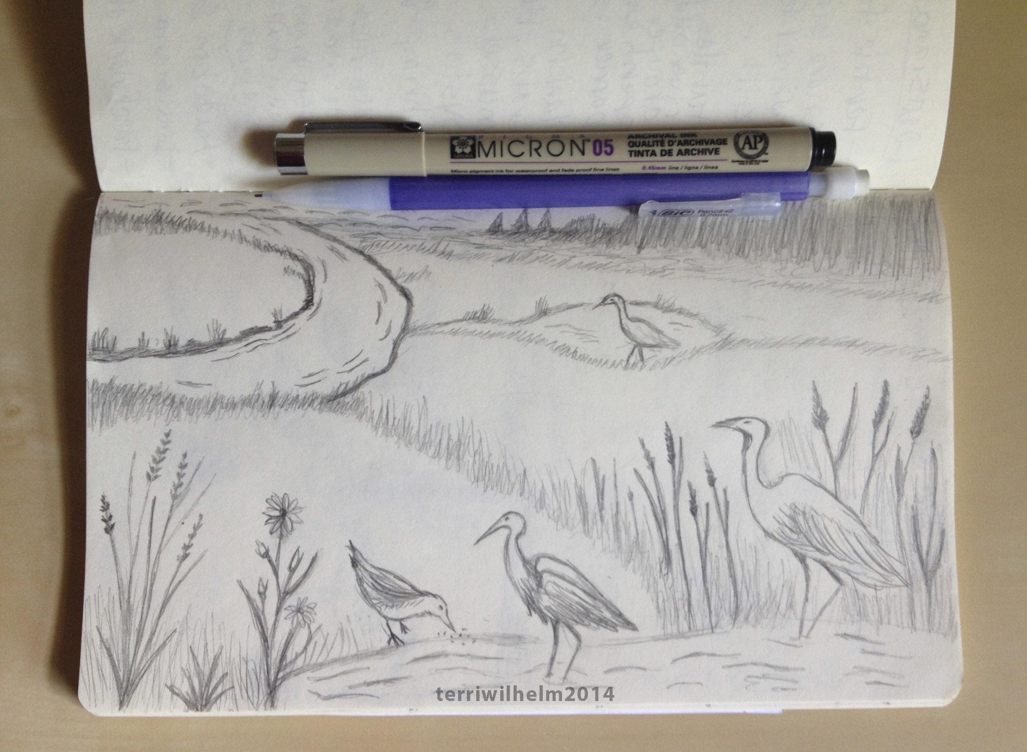 Sketchbook Shoreline