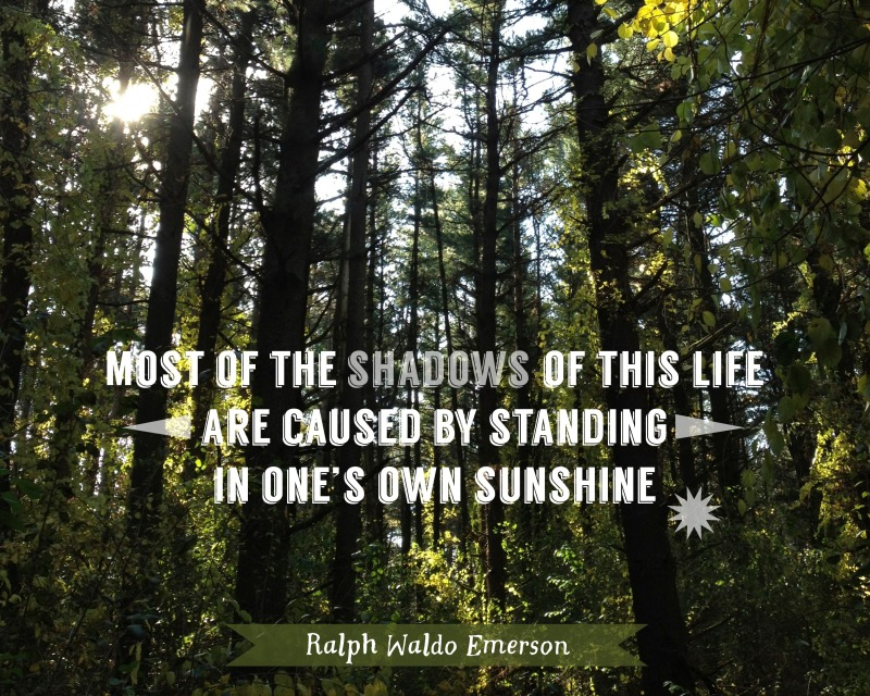 Shadows Sunshine quote poster