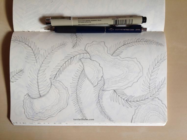 sketchbook fungus ferns
