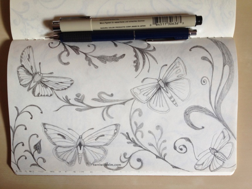 sketchbook moths