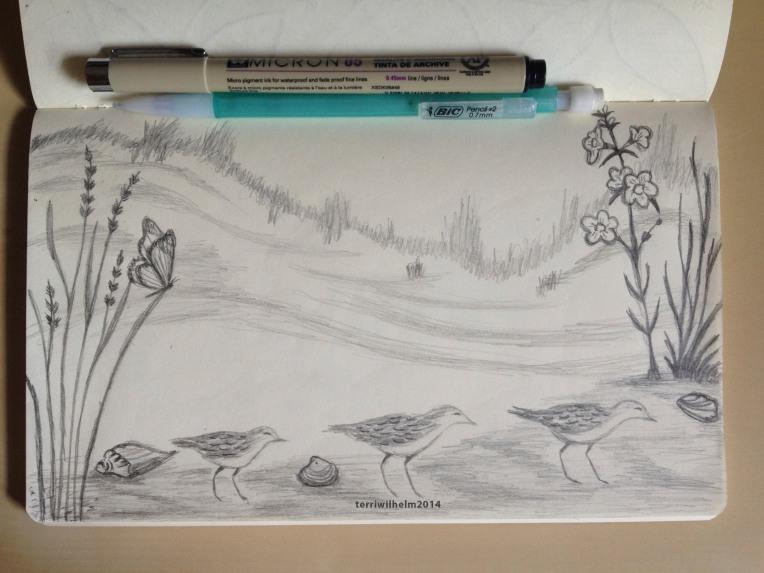 sketchbook shoreline dunes