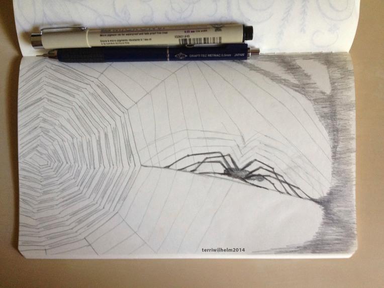 sketchbook spiderweb