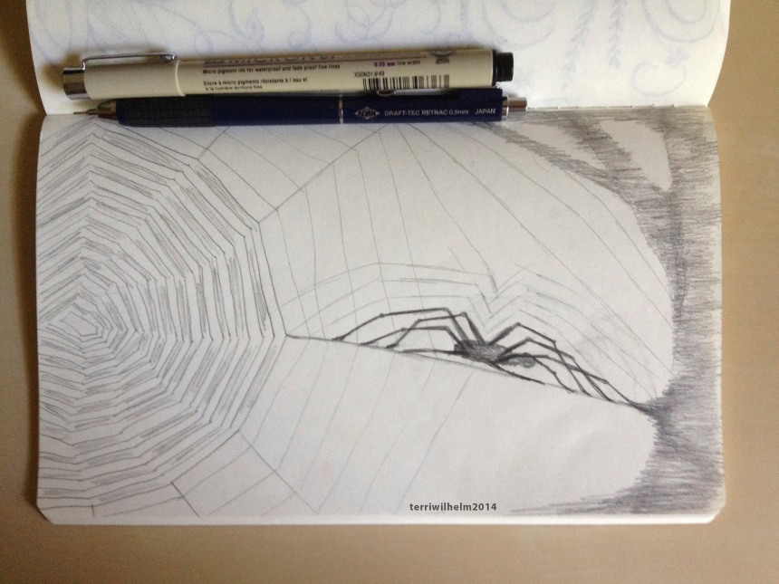 sketchbook spiderweb