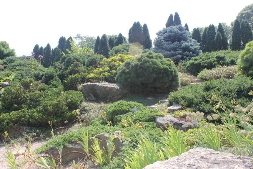 alpine garden at Olbrich Gardens