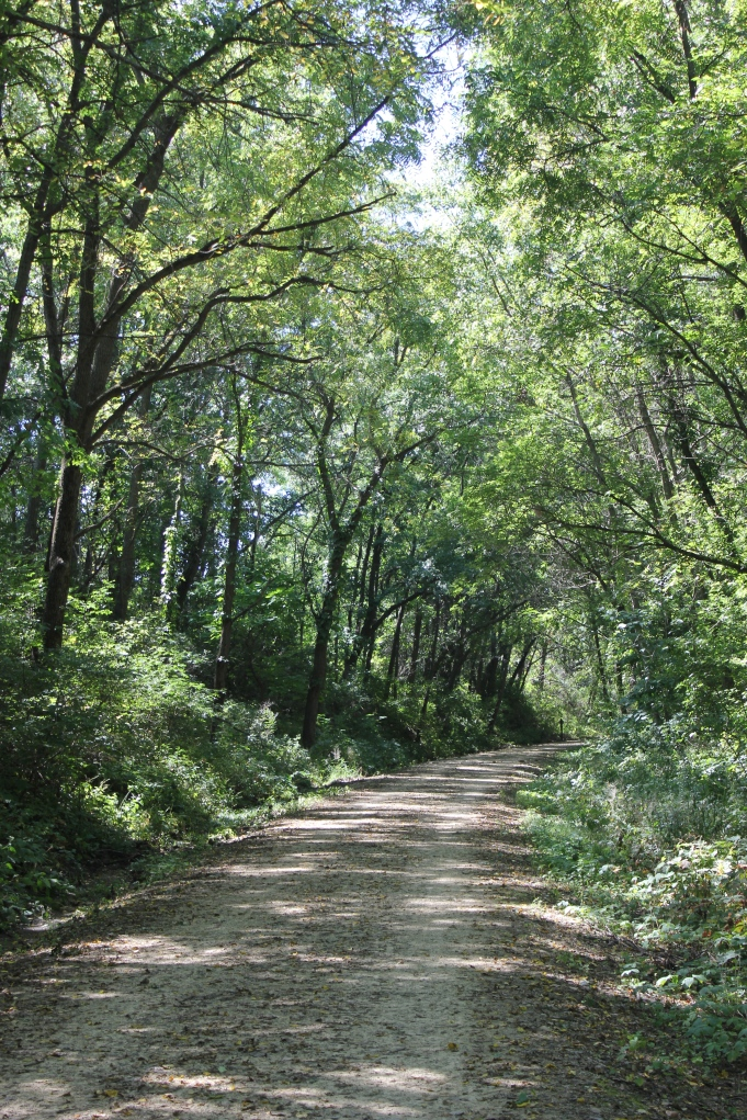trail in September