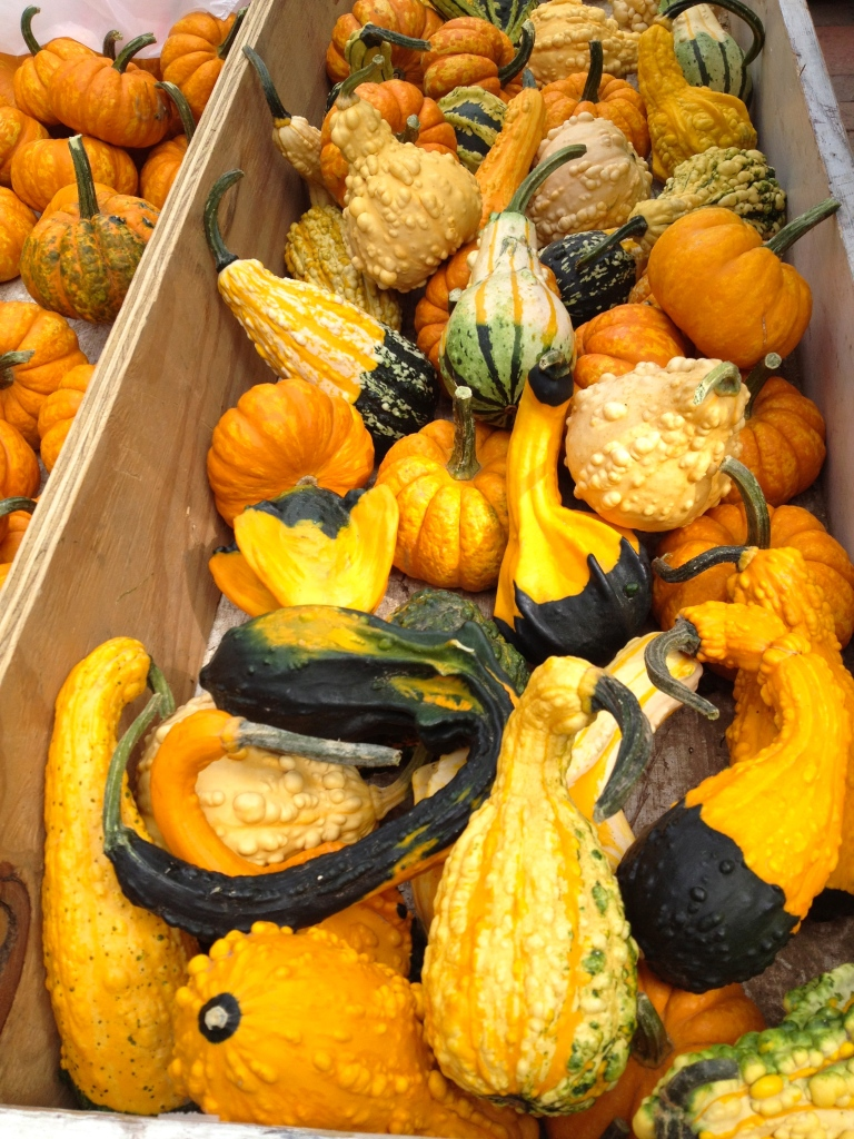 gourds at the market