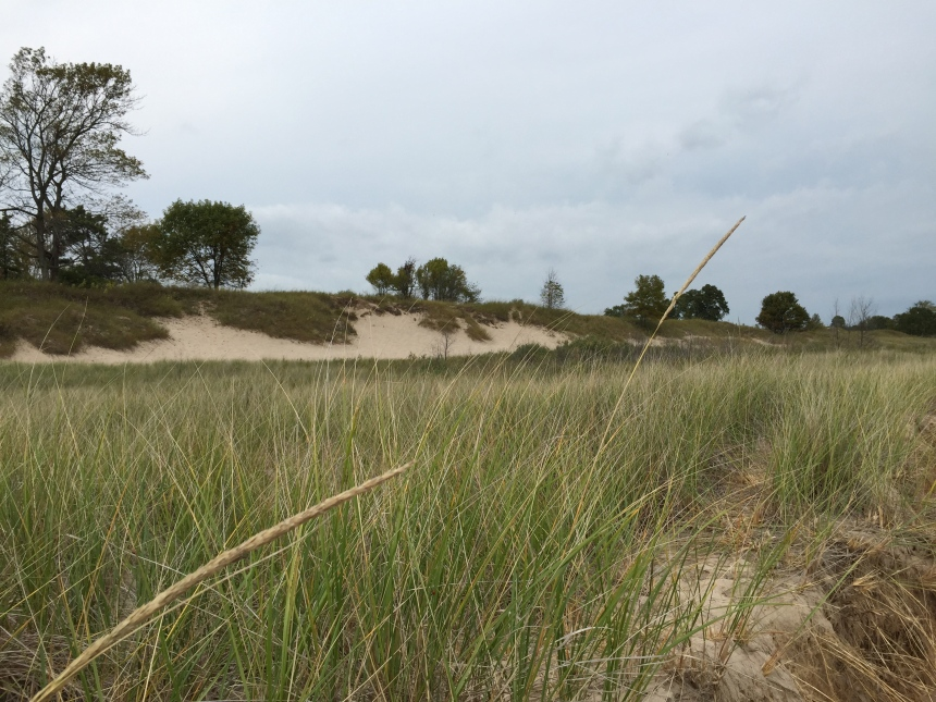 dunes at the beach at Lake Michigan