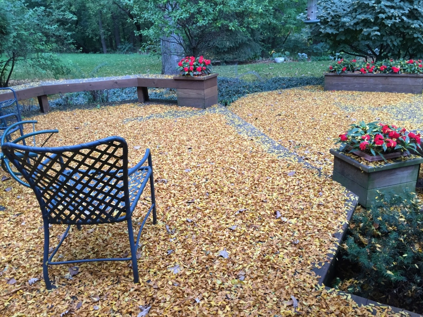 fall leaves on the deck