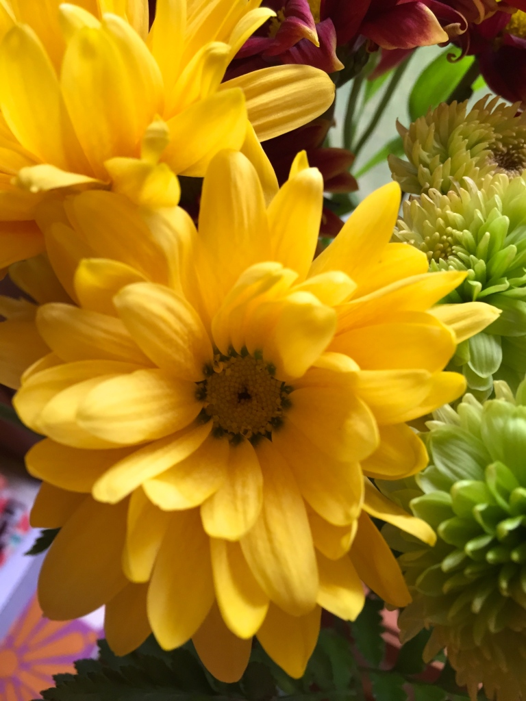 fresh cut flowers in yellow