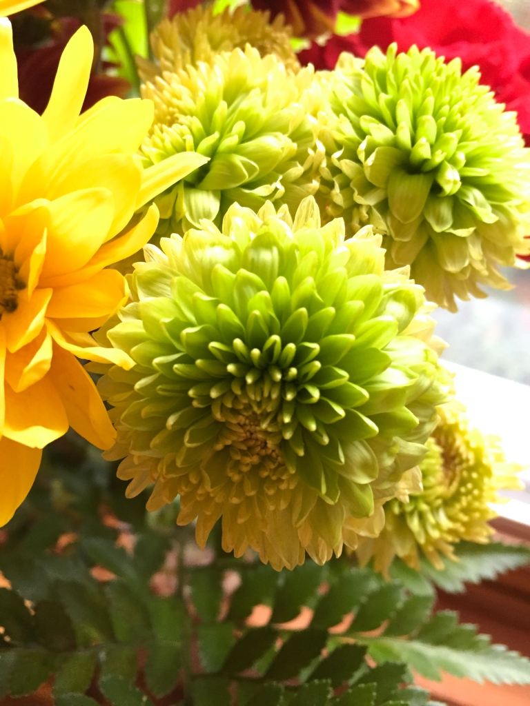 fresh cut flowers in green