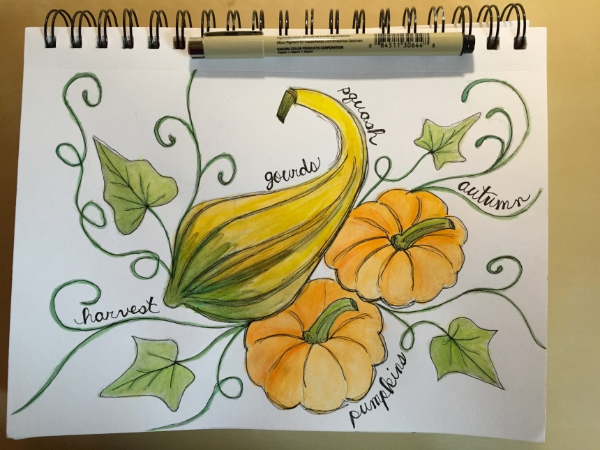 watercolor sketchbook gourds