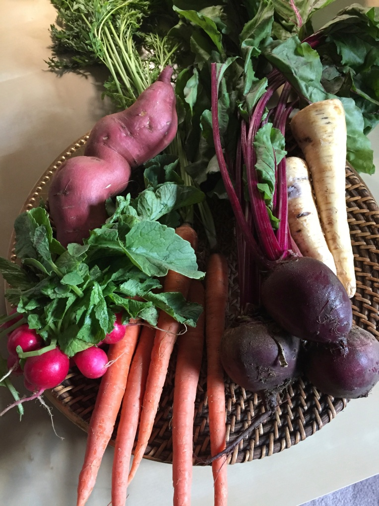 root vegetables reference