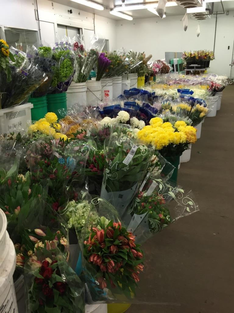 greenhouse cut flowers
