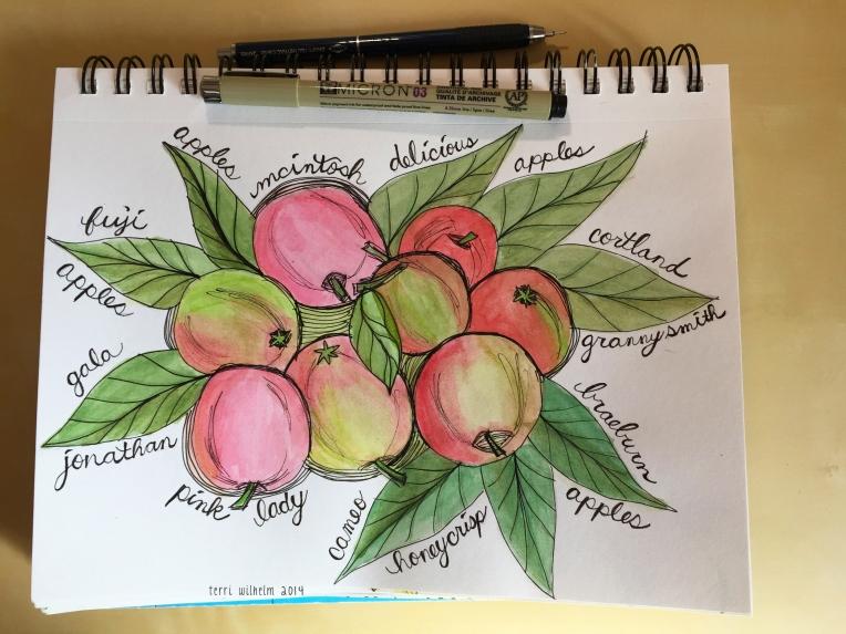 sketchbook apples