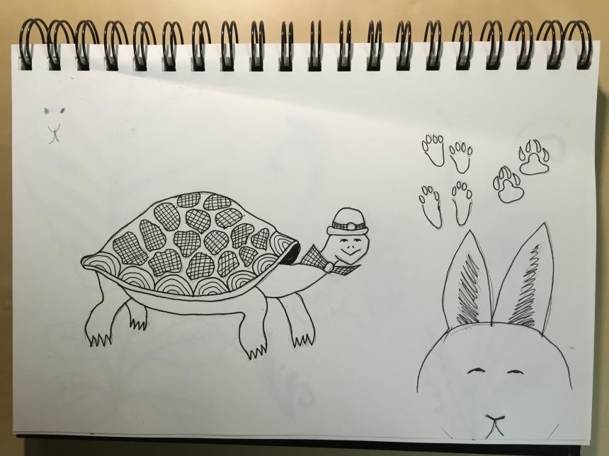 sketchbook tortoise