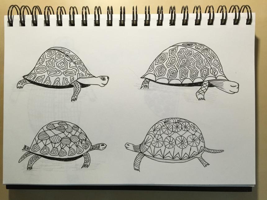 sketchbook page of tortoises