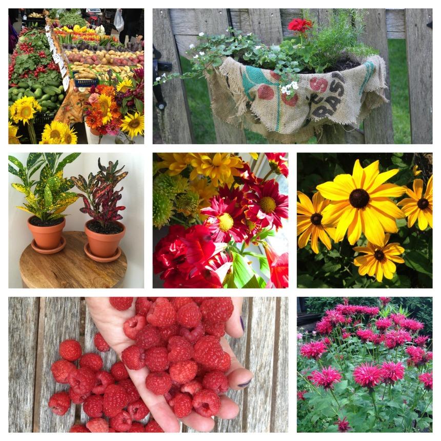 2014 recap gardens