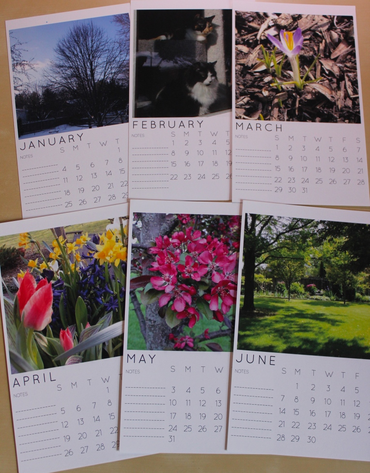 IG calendar 2015 backyard pics