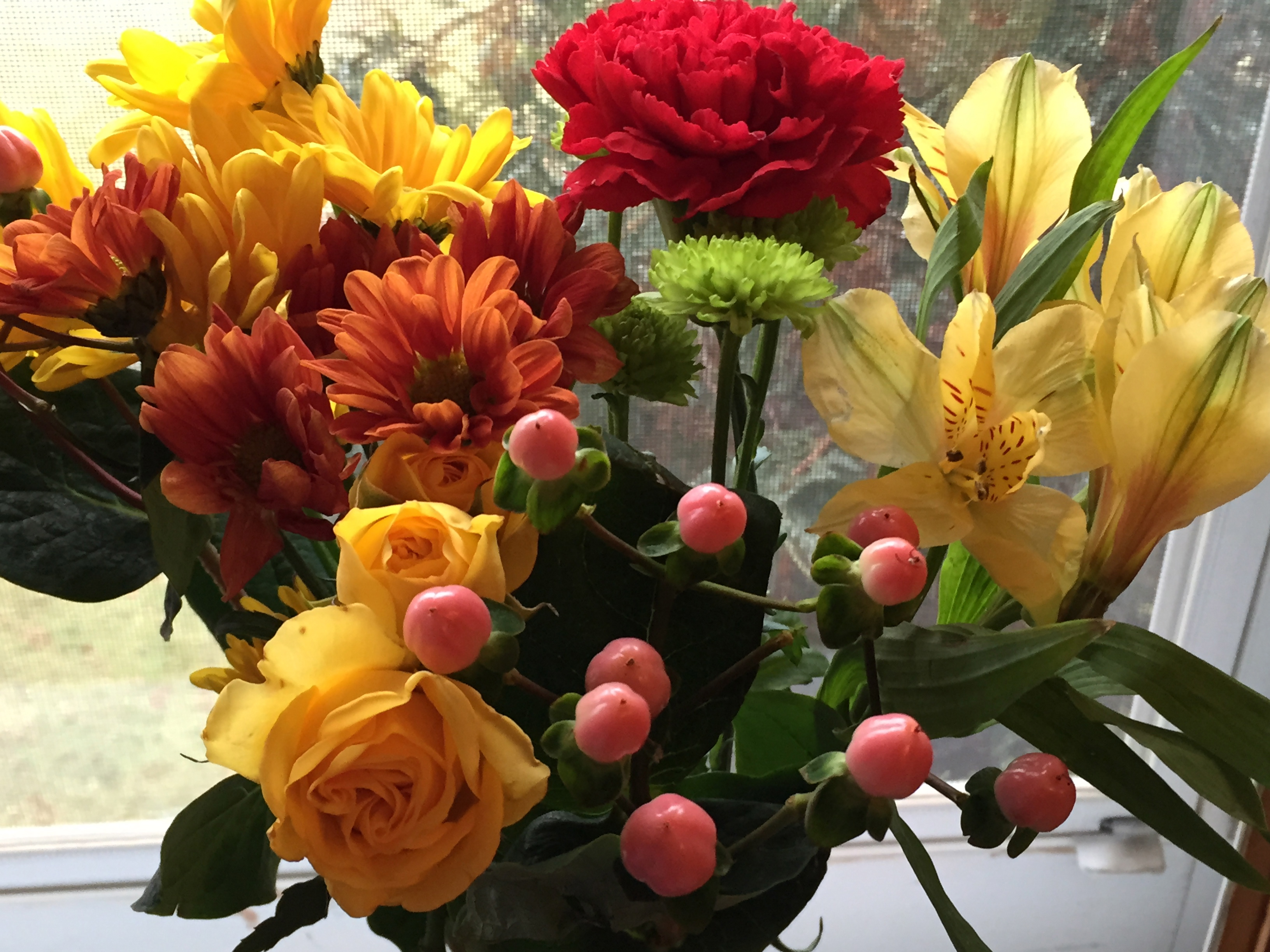Notes From the fice This Week's Fresh Cut Flowers