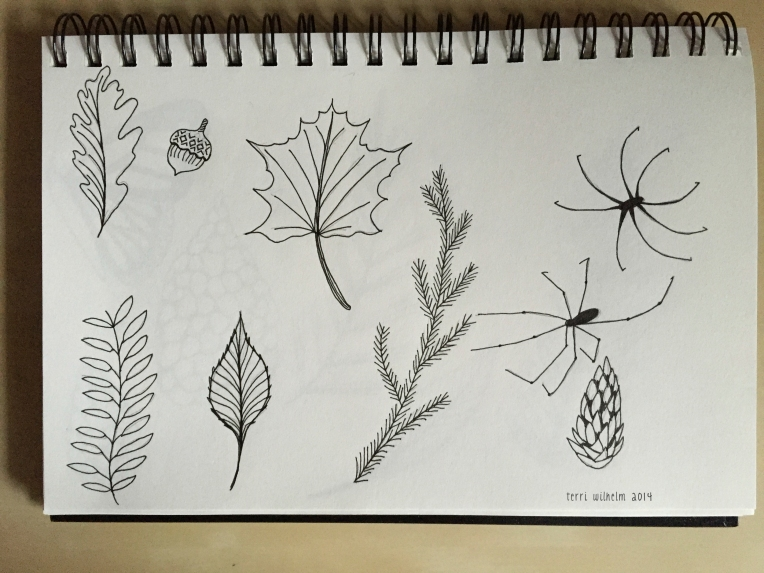 sketchbook-trailtreasures2