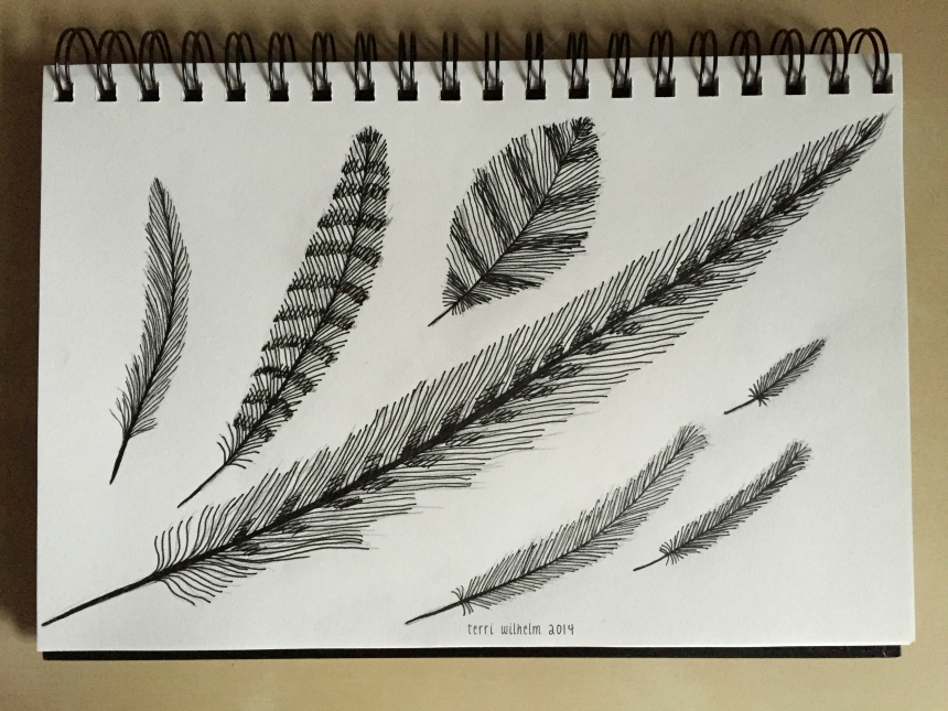 sketchbook-trailtreasures4