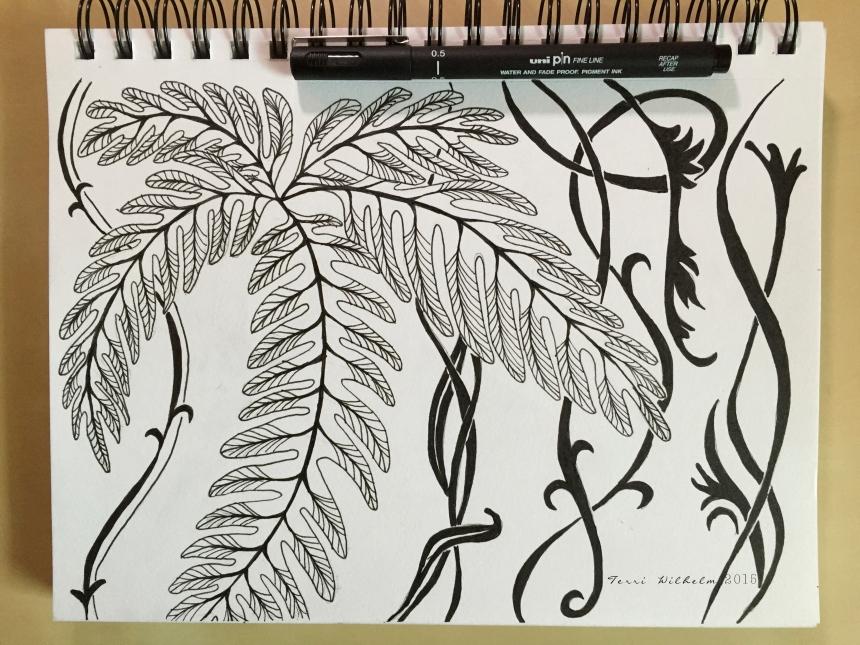 sketchbook tiny ferns