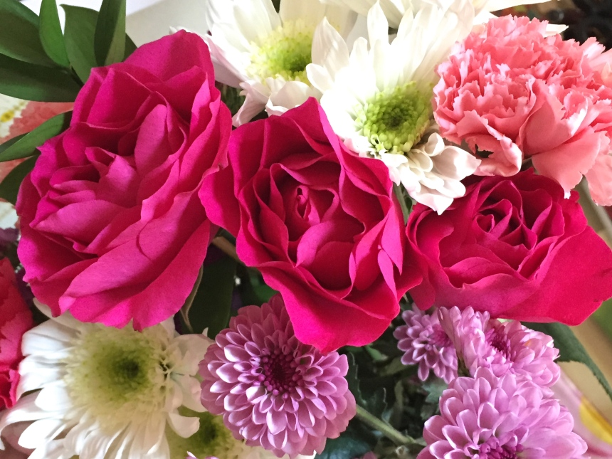 fresh cut fuchsia roses