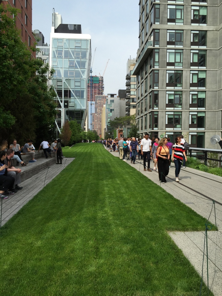 the lawn on the High Line