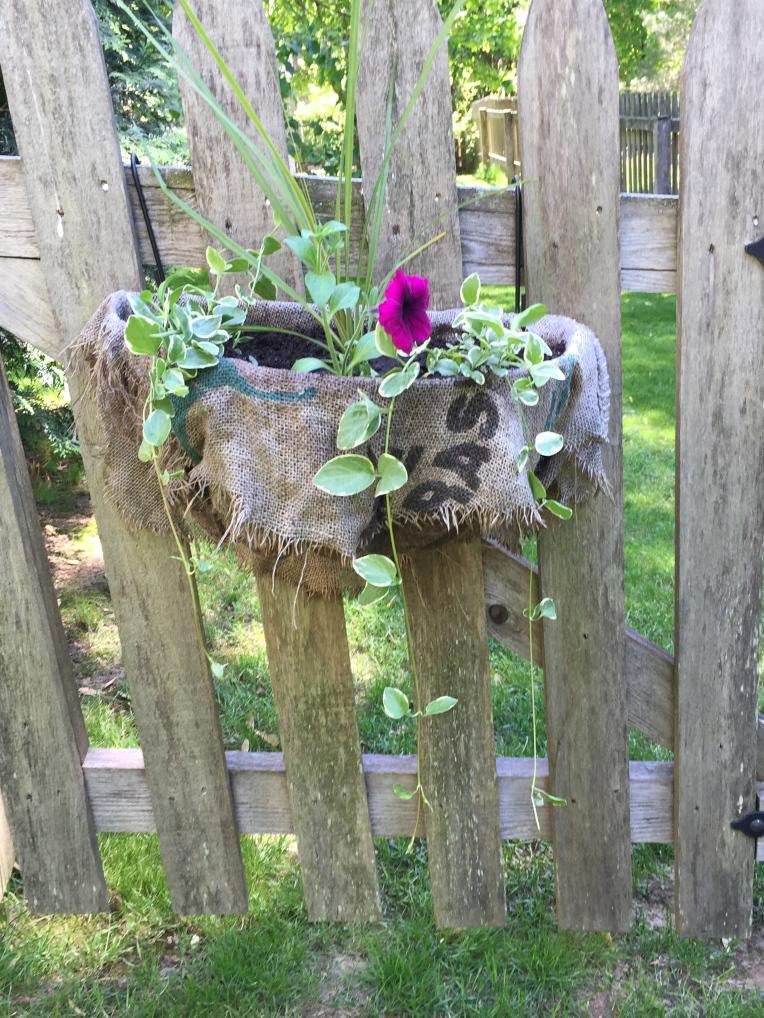 new garden gate basket