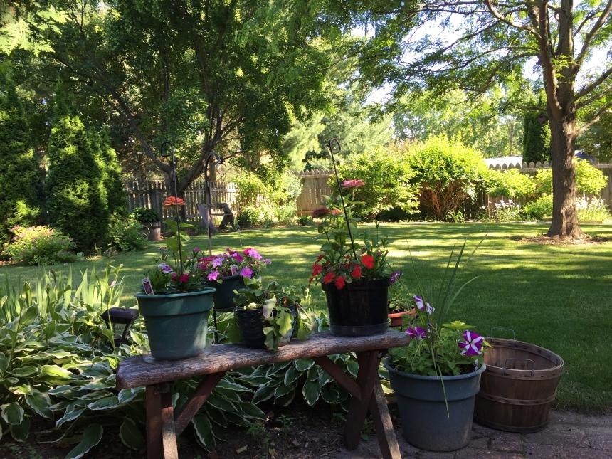 June gardens