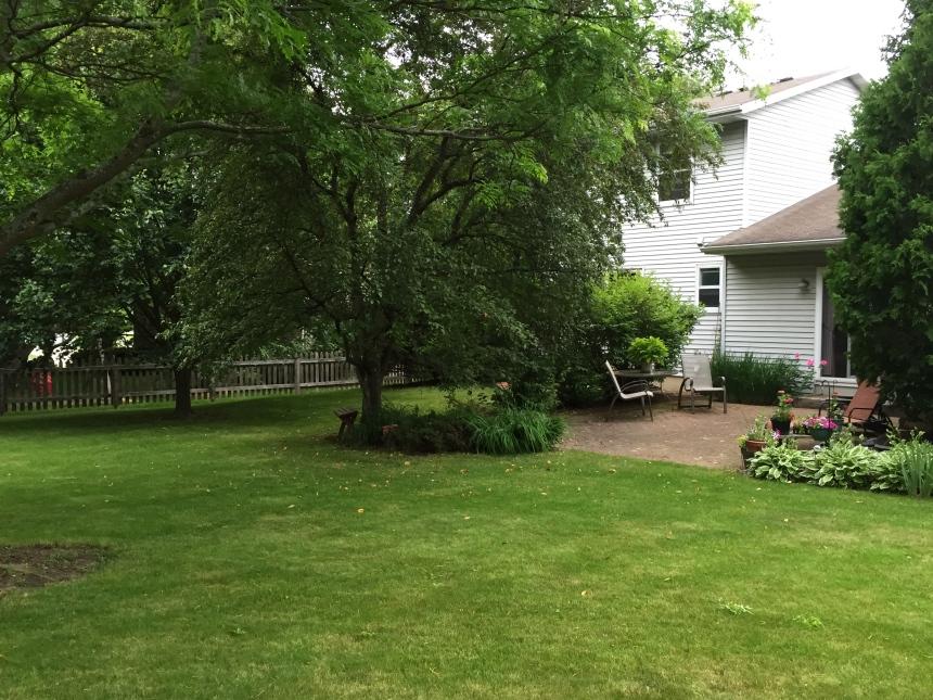 backyard and patio